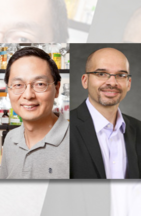 The Roy J. Carver Charitable Trust has awarded a $2 million grant to the IGB. Under the leadership of PI Huimin Zhao and co-PI Christopher Rao, the grant will provide instrumentation and core facilities for a new research theme devoted to synthetic biology.