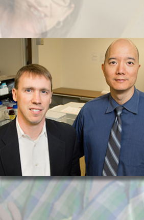 Chemistry professor and IGB faculty Paul Hergenrother (left) with veterinary clinical medicine professor Tim Fan led a study of an anti-cancer compound in dogs now headed for human clinical trials.